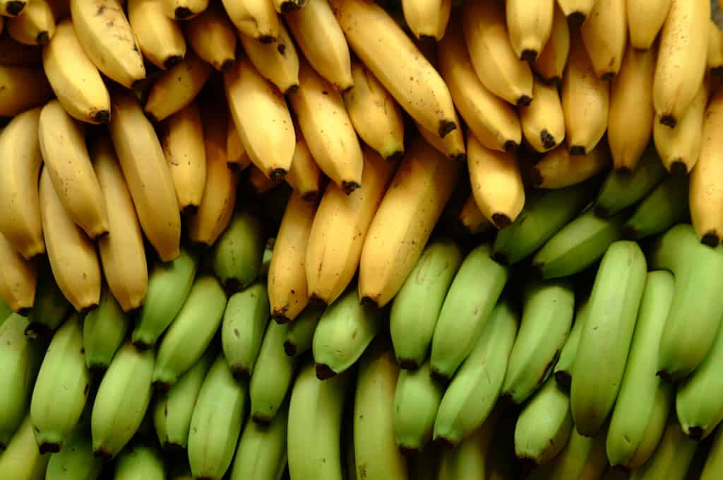 10 Amazing Facts About Bananas