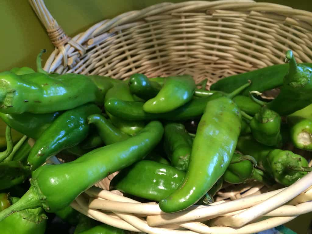 Whole Foods Hatch Chile Recipes