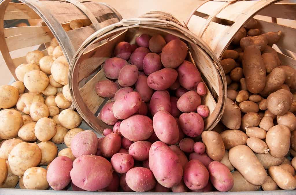 How To Store Potatoes the Right Way
