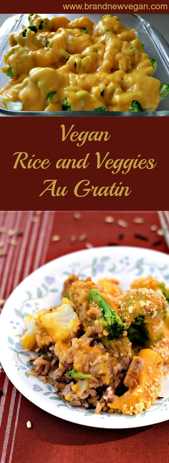 vegan rice and veggies pin