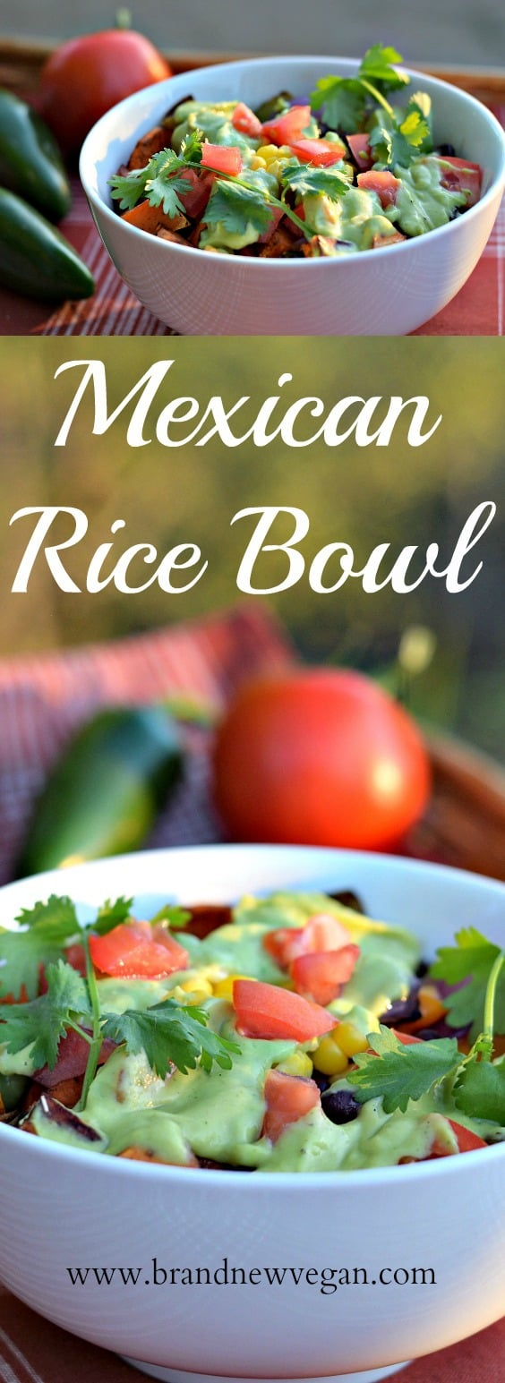 mexican-rice-bowl-pin