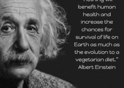 BNV Meme Einstein