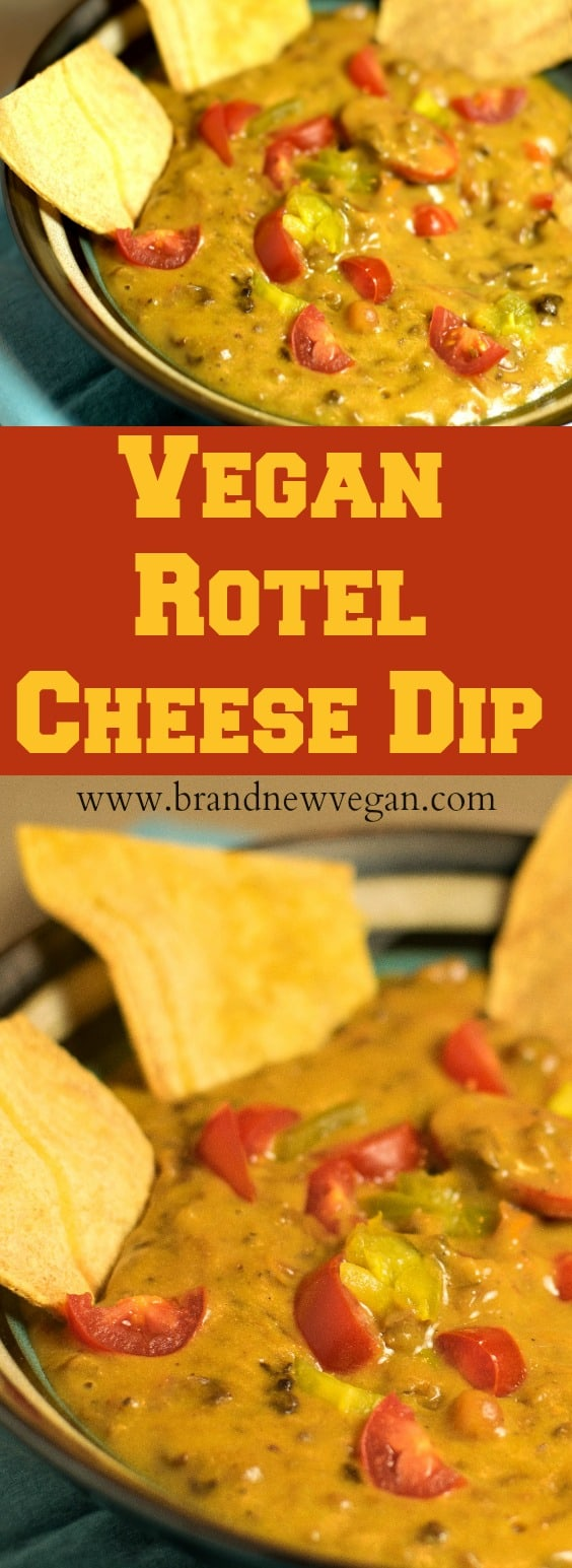 vegan rotel cheese dip pin